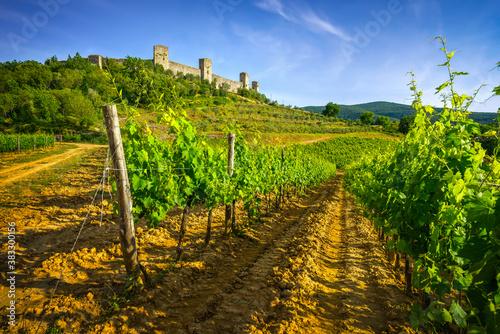 Naklejka premium Monteriggioni medieval fortified village and vineyards, Siena, Tuscany. Italy