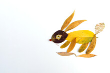 Abstract Bunny Made Of Autumn ...