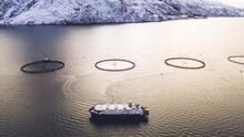 Salmon Fish Farming In Norway ...