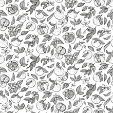 Tangerine Pattern. Organic Food, Vector Doodle Hand Drawn Sketch Style. Mandarin Background For Fabric Print, Textiles, Wrapping Paper, Food Packaging.