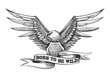 Eagle With Shield And Ribbon E...
