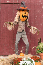Scarecrow Straw Man With A Pumpkin Head For Halloween.