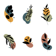 Set Of Abstract Plants.Silhoue...