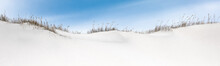 Panorama Of Snow Covered Sand Dunes With Sea Grass.