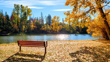 Park Bench Beside A Lake Durin...