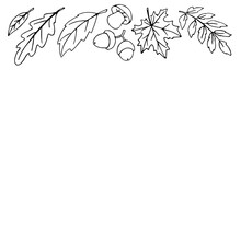 Autumn Background With Space And Border Of Leaves, Mushrooms, Acorns On Upper Edge. For Invitation, Ending, Frame, Children's Print, Or Coloring. The Theme Is Forest, Happy Fall, Thanksgiving
