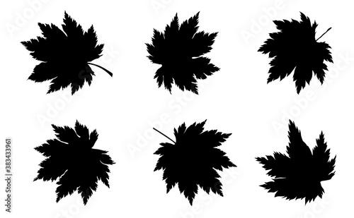 Obraz na plátně silhouette of maple leaves set. Eps10 vector illustration.