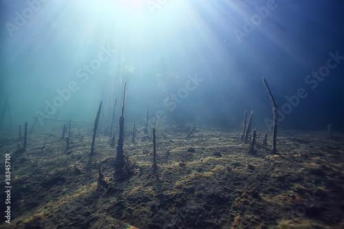 Obraz na plátně sun rays river underwater landscape / abstract underwater landscape plants fresh