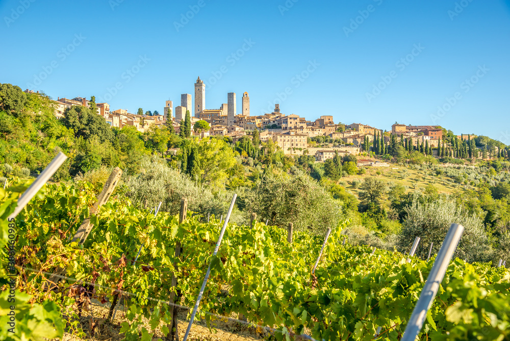 View at the town of San Gimignano from wineyards, Italy