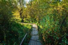 Small Rustic Bridge Across Riv...