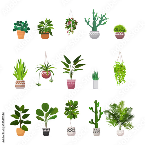 set decorative houseplants planted in ceramic pots different garden potted plants collection isolated vector illustration