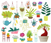 Home Plants Vector Illustration. Cartoon Flat House Indoor Decoration Collection With Hanging Planters, Succulent Houseplants In Pot Or Vase, Potted Tree For Home Garden And Balcony Isolated On White