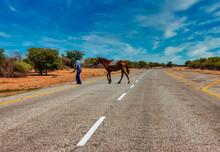 African Rider