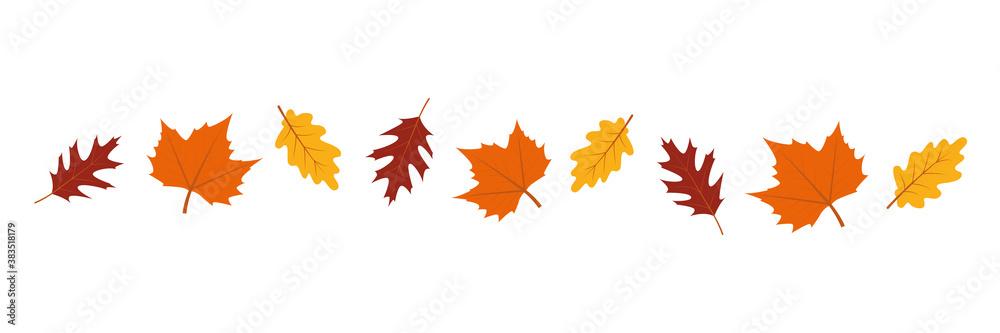 Fototapeta set of autumn leaves in the wind on white background vector illustration EPS10