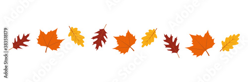 set of autumn leaves in the wind on white background vector illustration EPS10 Canvas