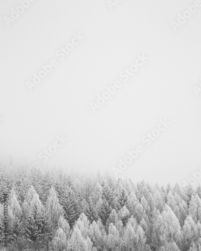 Snowfall - 383520994