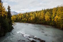 Blue River In Fall Landscape