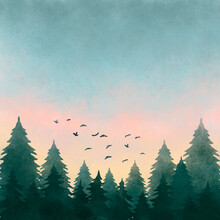 Watercolor Illustration Of A Forest Landscape At Sunset