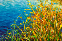 Painting With Acrylics Bright Autumn Reed Cattail And Blue Autumn River - A Fragment Of Painting. Autumn Reservoir.