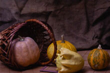 Pumpkins Fell Out Of The Basket. Sackcloth Background. Autumn Still Life