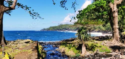 Cuadros en Lienzo Anse des cascades, ile de la Réunion
