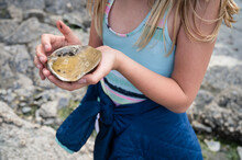 Young Girl On Lopez Island Beach Holding Large Shell