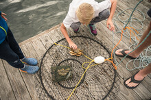 Young Girl Inspects Crab In Circular Crab Trap On Wooden Dock