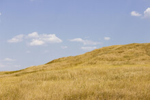 Landscape With Hills And Blue Sky. South Of Russia, Summer. Yellow Grass In Late August