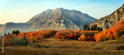 Fall colors landscape in the Wasatch Mountains, Utah, USA. Canvas Print