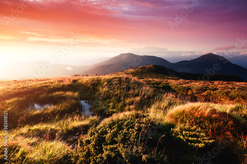 Beautiful alpine highlands in morning light. Location place Carpathian mountains, Ukraine.