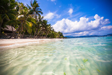 Tropical Perfect Beach With Gr...