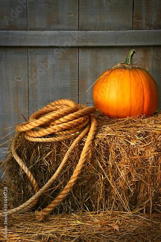 Pumpkin on a bale of hay
