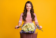 Photo Portrait Of Girl With Curly Hair Keeping Hands On Bicycle With Basket Of Wild Camomiles Isolated On Bright Yellow Color Background