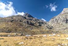 Paysage De Montagne Dans Les A...