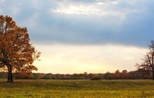 Autumn Landscape With Floodpla...