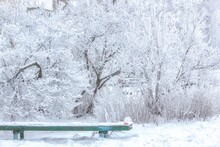 Snow Covered Bench With Lost A...