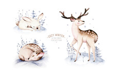 Watercolor Winter Forest Anima...