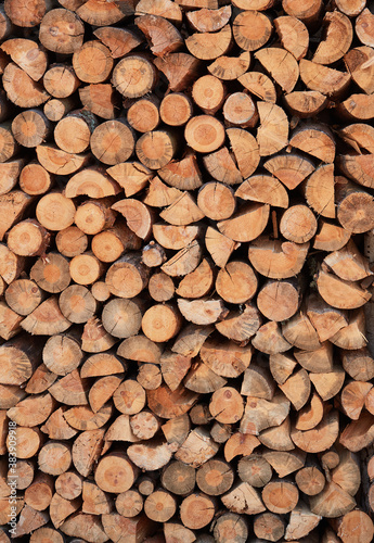 Canvas-taulu Close focus on cut log woods from softwood trees ready to use as fuel firewood