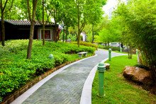 Chinese Garden With Walking Path