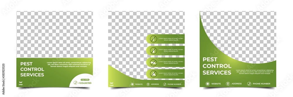Fototapeta Set of an editable square background template. Social media post template pest control. Green color with a place for the photo. Usable for Pest control and home care services.
