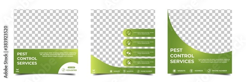 Set of editable square background template. Social media post template pest control. Green color with place for photo. Usable for Pest control and home care services.