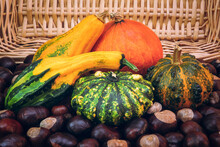 The Autumn Harvest. Decorative Pumpkins And Chestnuts Fall Out Of The Basket