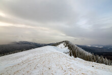 Winter Mountain Landscape, Snowy Peaks And Spruce Trees Under Cloudy Sky On Cold Winter Day.