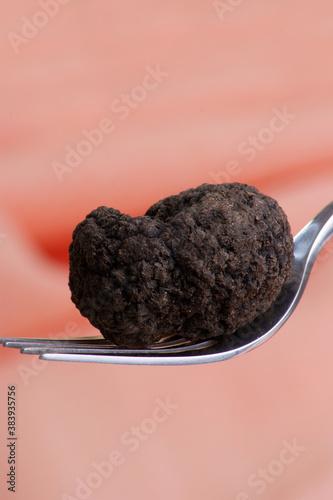 one organic summer truffle on a fork