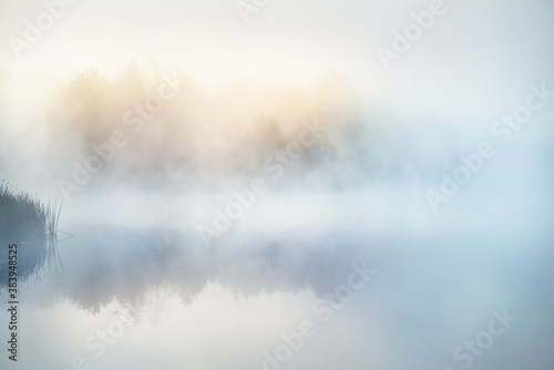 Fotografía Picturesque scenery of the forest lake in a thick white fog