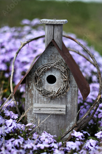 Fotografering birdhouse