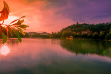 Blurred Nature Background View...