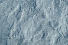 Snow Surface Detail