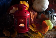 Autumn Still Life With Red Can...
