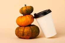 Little Pyramid Frm Pumpkins And Coffee Cup Near It.Spicy Latte Concept.